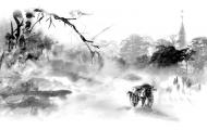 Ngày Về Của Hoa Anh Đào - Phong Châu