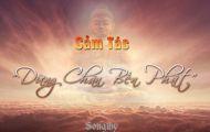 Dừng Chân Bến Phật - Songthy
