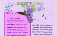 Thơ Tranh: Sinh Nhật Tháng Bảy - Phương Hoa